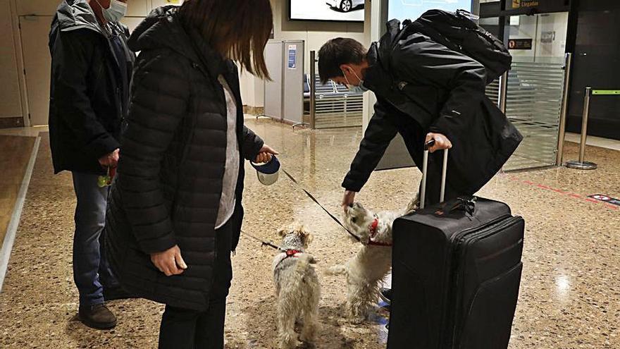 Asturias recibe los primeros pasajeros internacionales previa PRC en el aeropuerto: la prueba, más cara que el billete