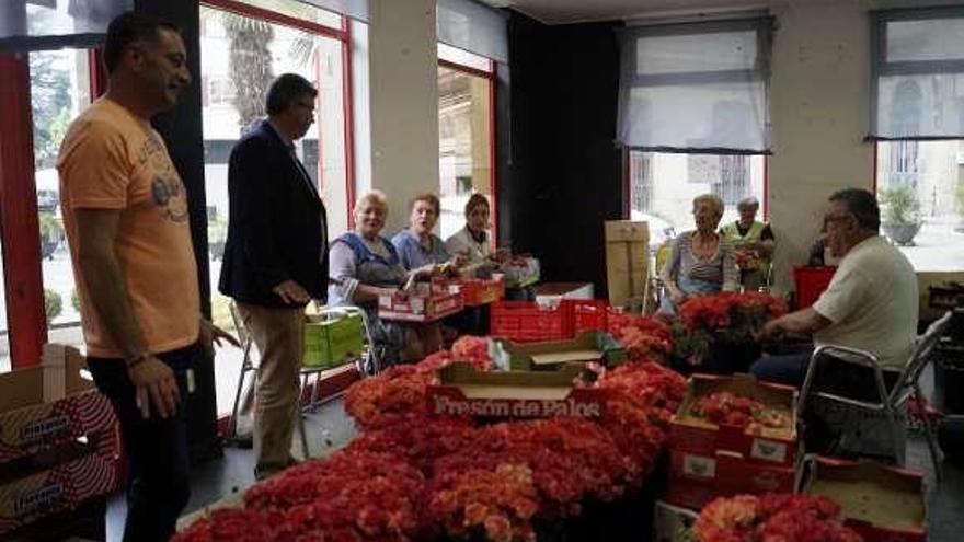Redondela adquiere 140.000 flores para las alfombras del Corpus