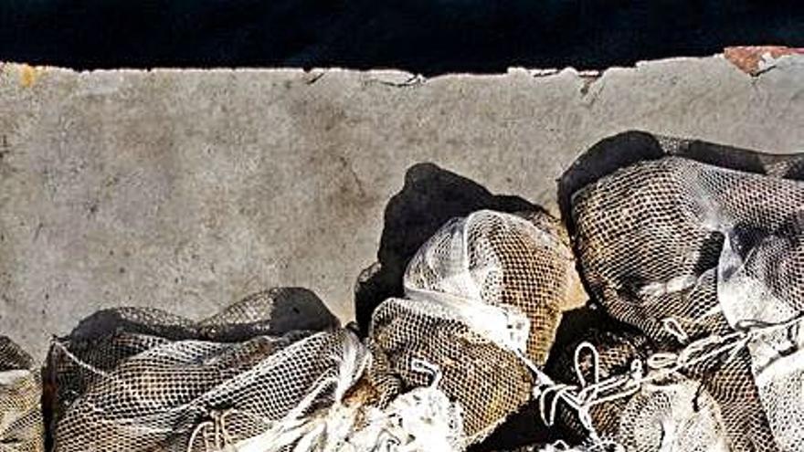 Eurídice aconseguix retirar una tona de «xarxes fantasmes» en la mar