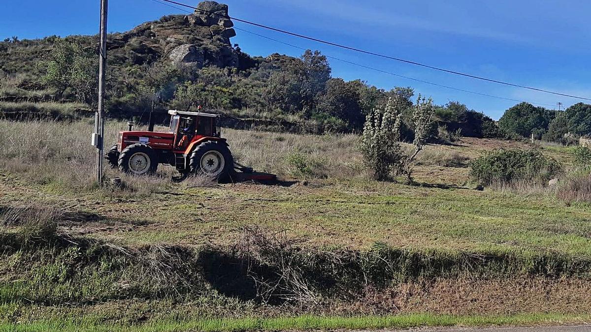 Un tractor limpia la maleza en el entorno urbano de Fermoselle.   Cedida