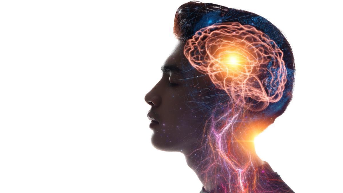 El cerebro es la herramienta más avanzada que poseemos.