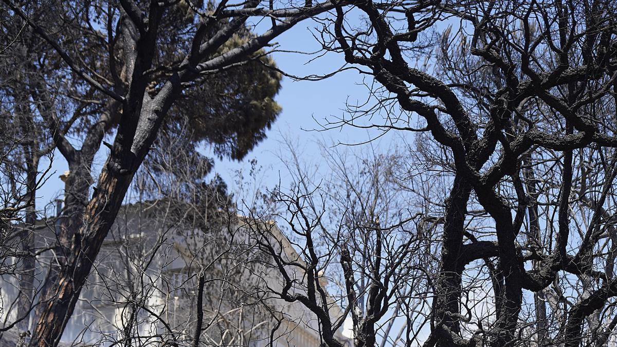Incendi entre Lloret i Tossa