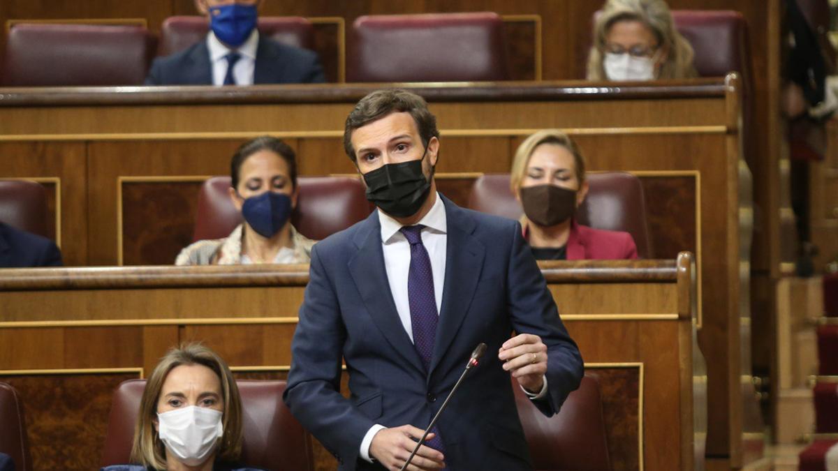 El líder del PP, Pablo Casado, a la sessió de control del Congrés dels Diputats