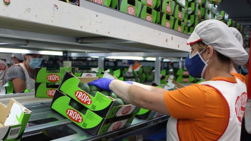 TROPS lanza una oferta de empleo para cubrir 500 puestos para peón de manipulado y envasado