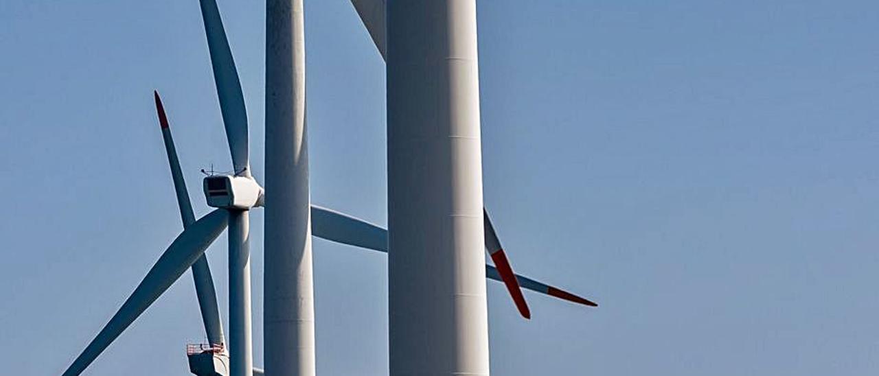 La  fiebre  de las renovables