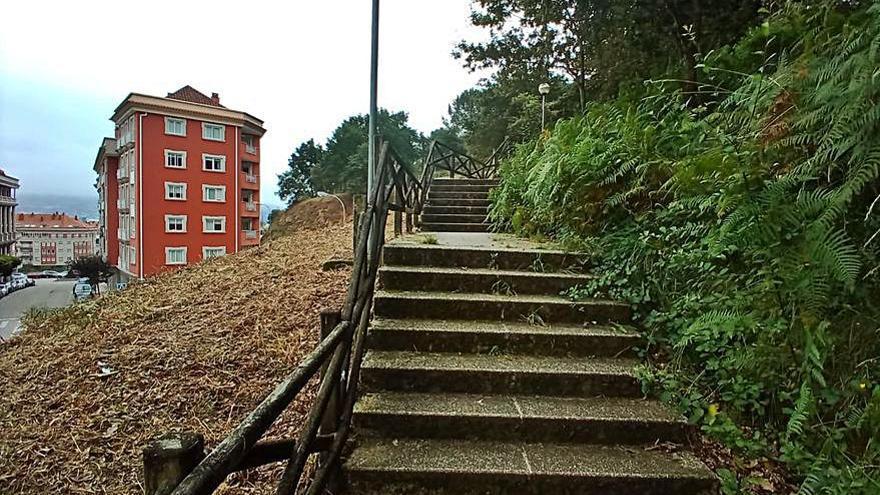El Concello completará con personal propio el desbroce de las escaleras a Sabaceda