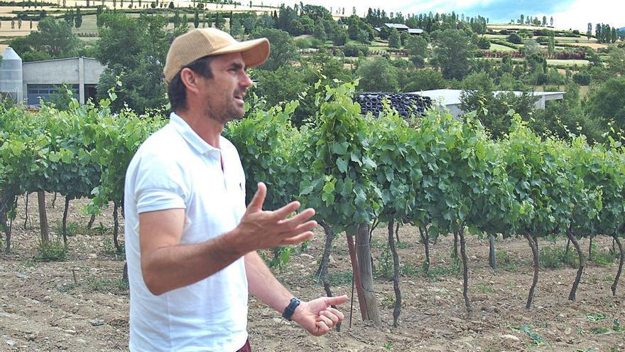 Fer vi a més de mil metres
