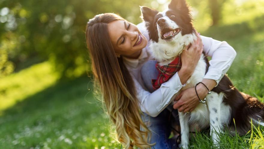 Cinco ejercicios perfectos para entrenar la mente de tu perro