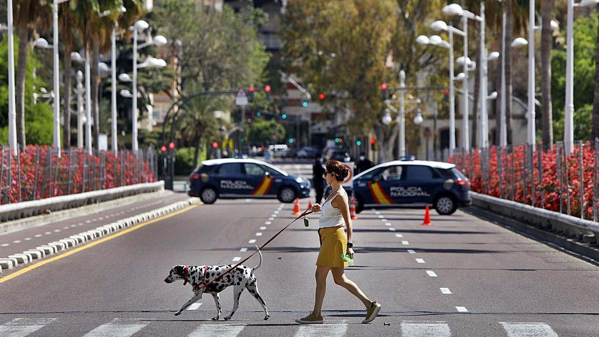 Una mujer pasea al perro por el puente de las Flores de València.