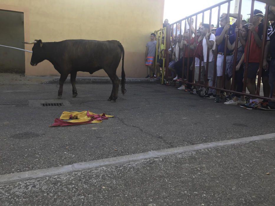 Fiestas de Santa Cristina de la Polvorosa 2017