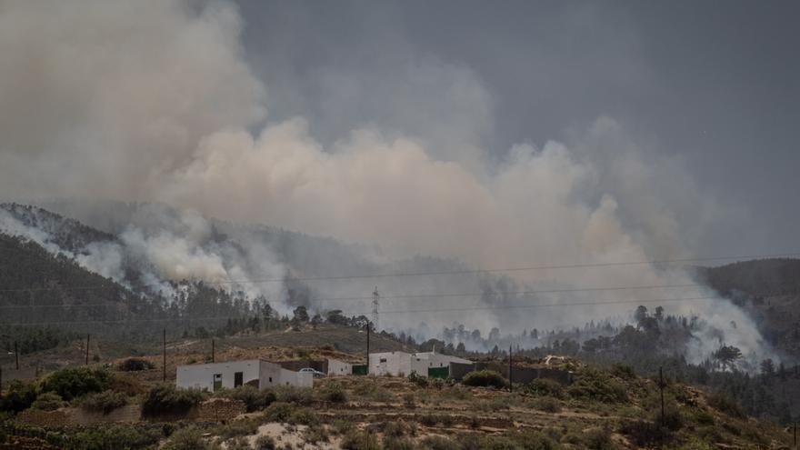 Incendio forestal en Arico