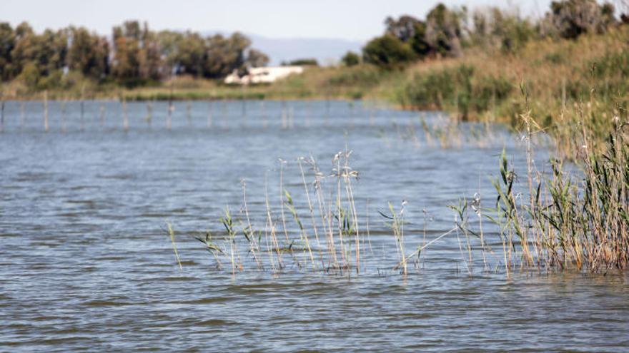 Gestión ambiental, prioridad en la agenda de los organismos valencianos