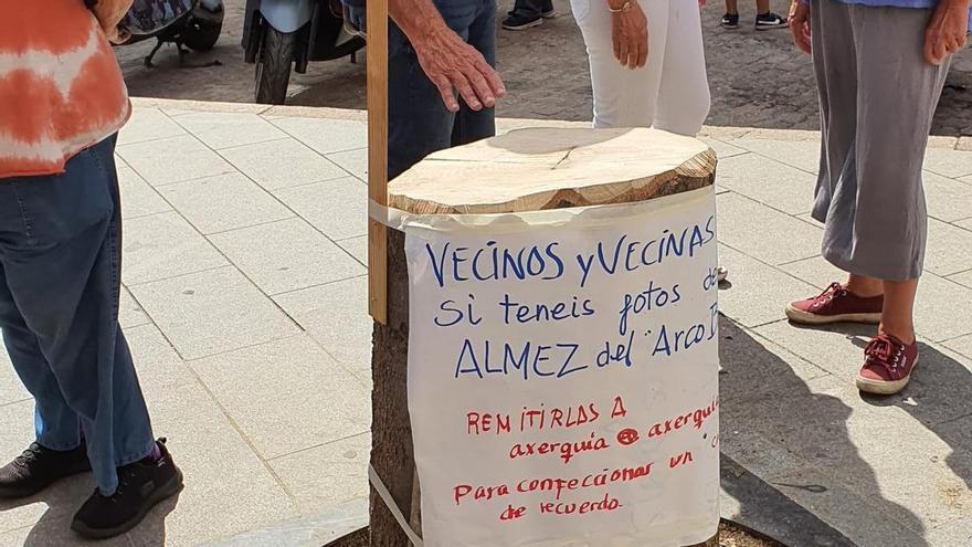 Convocan una concentración por la tala de un árbol en la plaza del Socorro