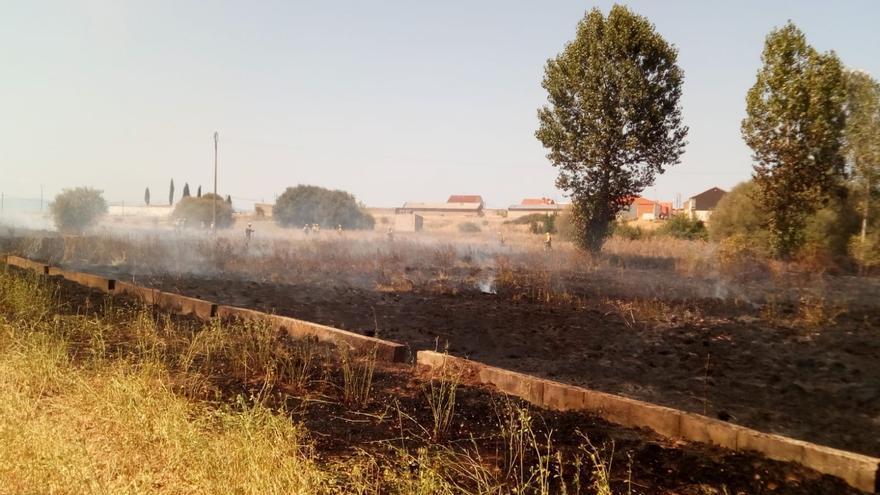 Controlado un incendio forestal en San Juanico el Nuevo