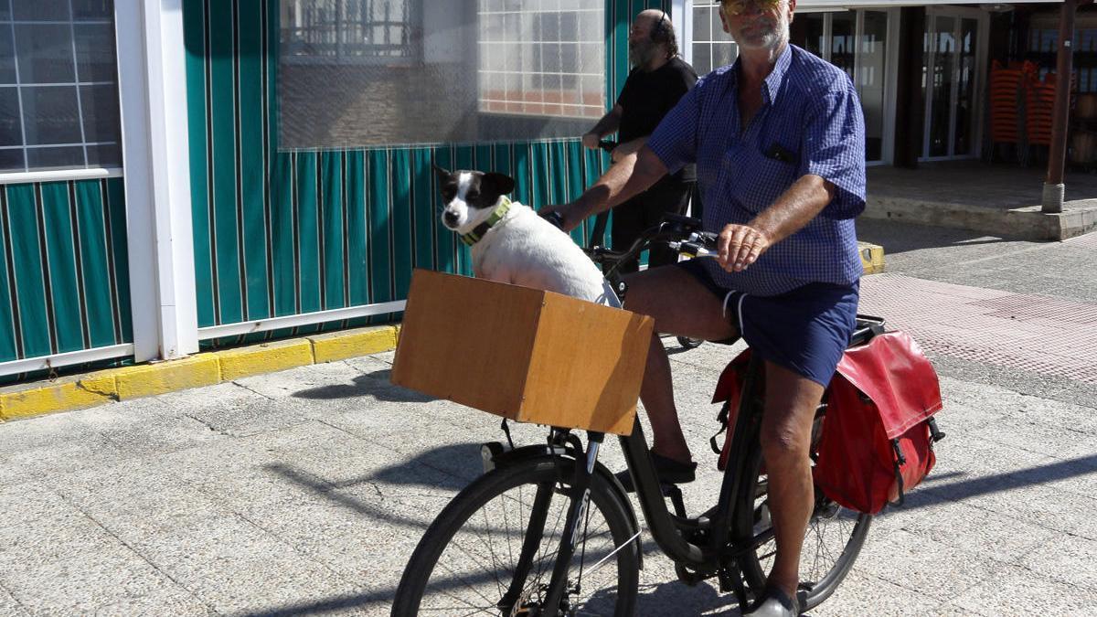 Un ciclista por el paseo marítimo de Pedregalejo con su perro en la cesta.