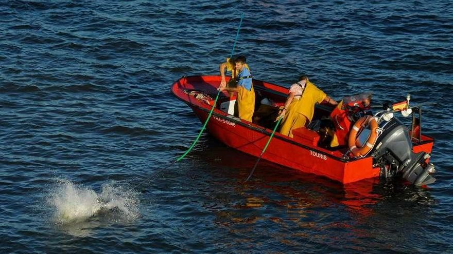 """Los """"rañeiros"""" barajan ampliar la campaña de libre marisqueo y aprovechar la Semana Santa"""