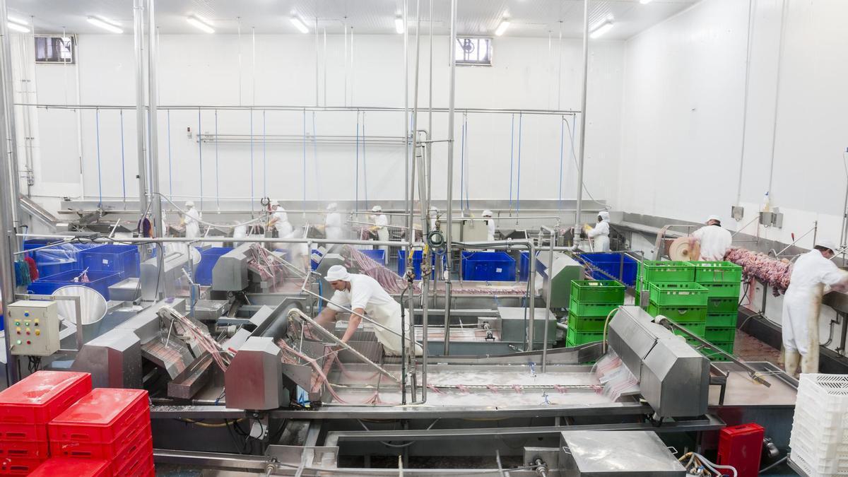 Varios empleados en una de las plantas cárnicas de Grupo Jorge