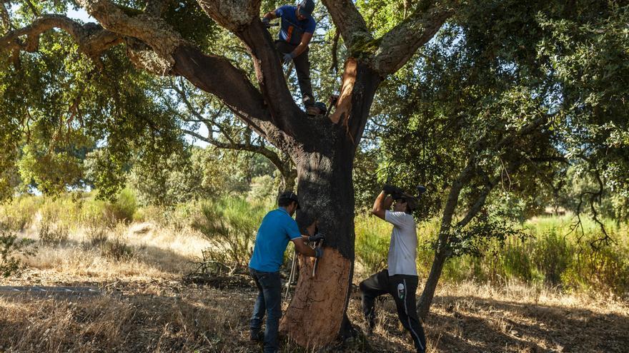 Temor en Arribes del Duero a los incendios originados en Portugal