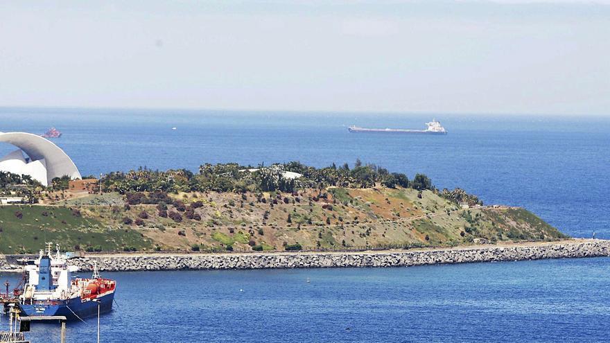 Santa Cruz quiere convertir en una zona de deporte y paseo la senda del Palmétum