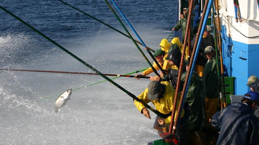 Dos buques canarios de pesca mantendrán su actividad en Senegal
