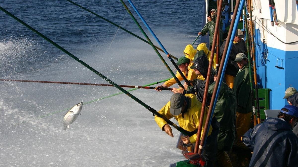 Vanoostende dice que el acuerdo de pesca de la UE con Senegal permitirá a dos buques canarios mantener su actividad.