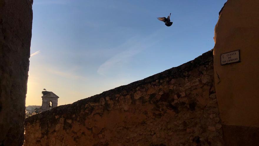El tiempo en Zamora hoy, jueves | El termómetro sigue subiendo
