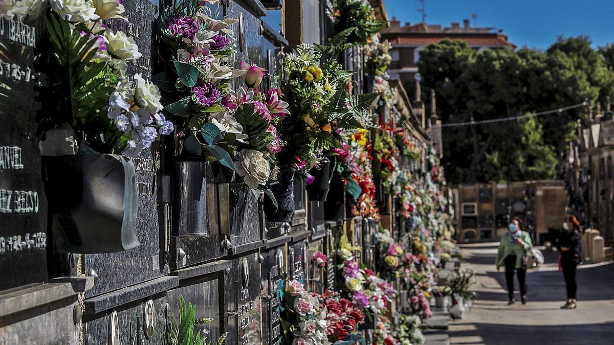 Imagen de uno de los cementerios de Elche que ha sido tomada recientemente.