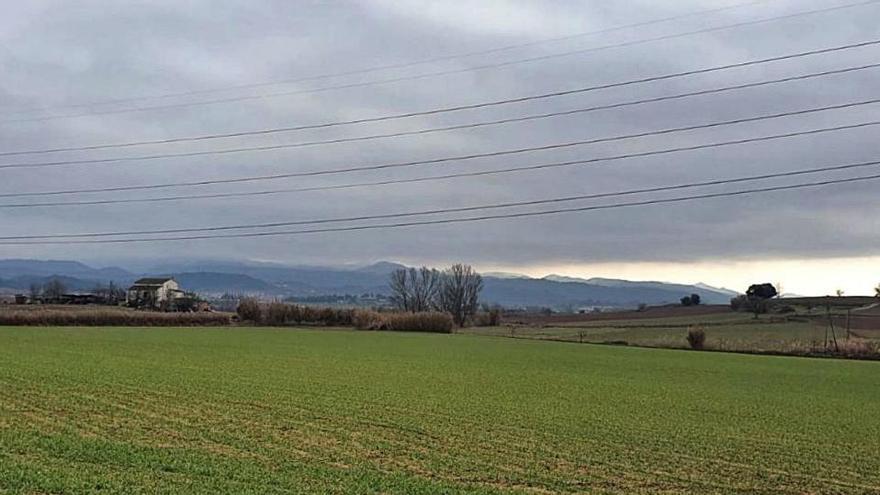 La Generalitat rebutja dues propostes de parcs solars al pla de Bages