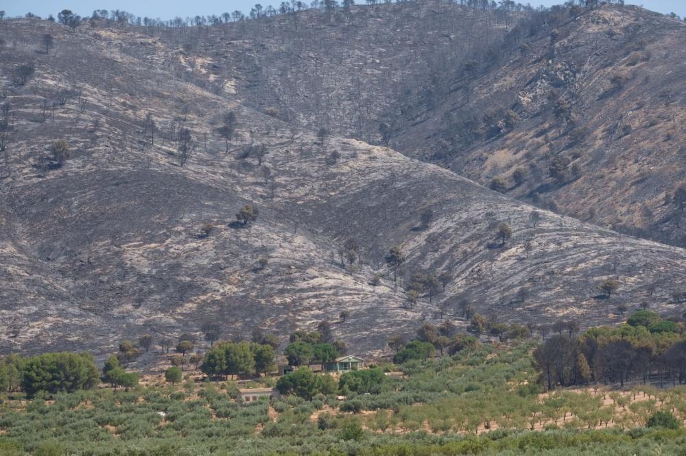 Así ha quedado la zona del incendio de Beneixama