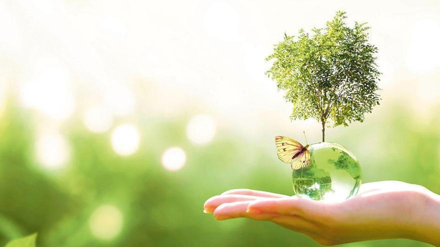 Banco Santander, firmemente comprometido con la protección del medio ambiente