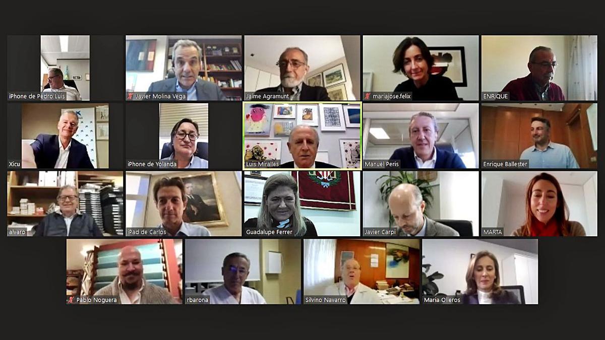 Integrantes de la Comisión Ejecutiva de Casa Caridad en reunión telemática.   LEVANTE-EMV