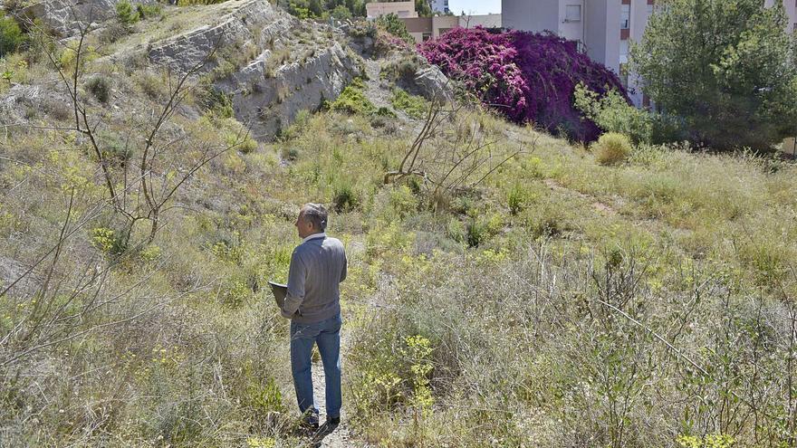 El primer paso para una senda verde en Málaga Este
