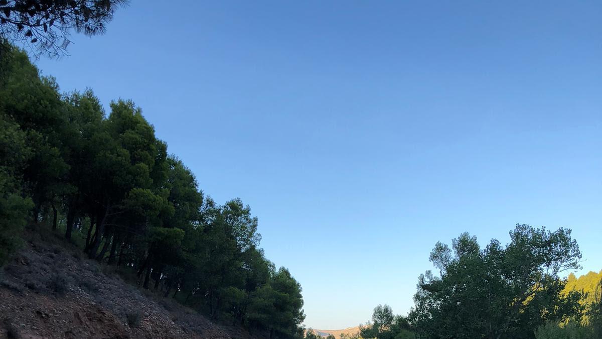 Daroca dispondrá de un centro de formación forestal