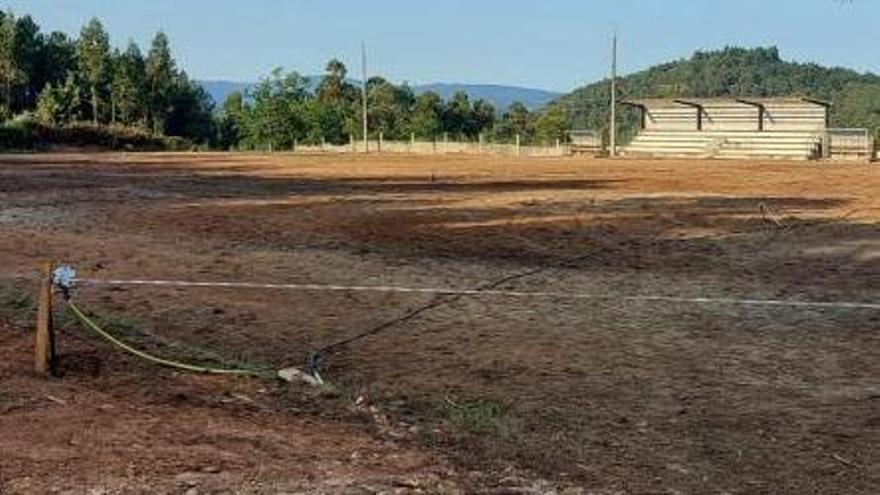Imagen del campo tras las labores de desbroce.