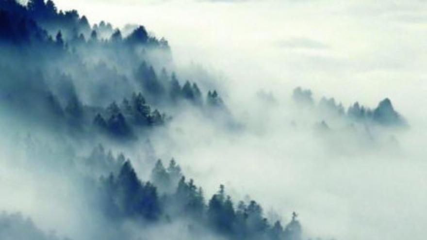 'Voz de niebla', de Juana Vázquez