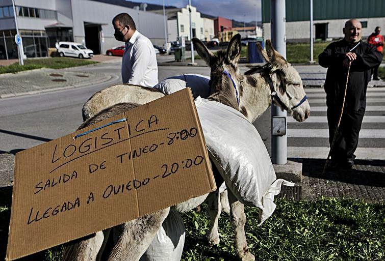 Detalle del cartel que llevaba uno de los burros.   Julián Rus