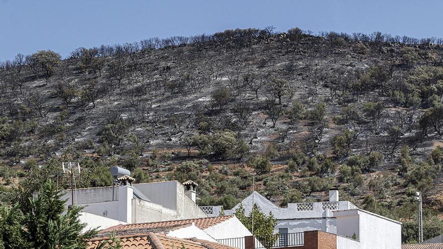 Estabilizado el incendio de Villaharta tras una madrugada de intenso trabajo