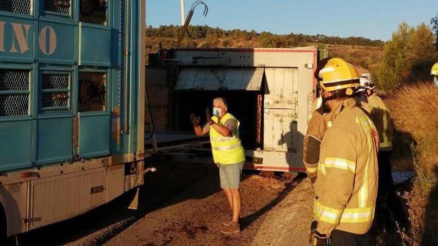 Bolca un camió carregat amb vedells a la C-25, a Calonge de Segarra
