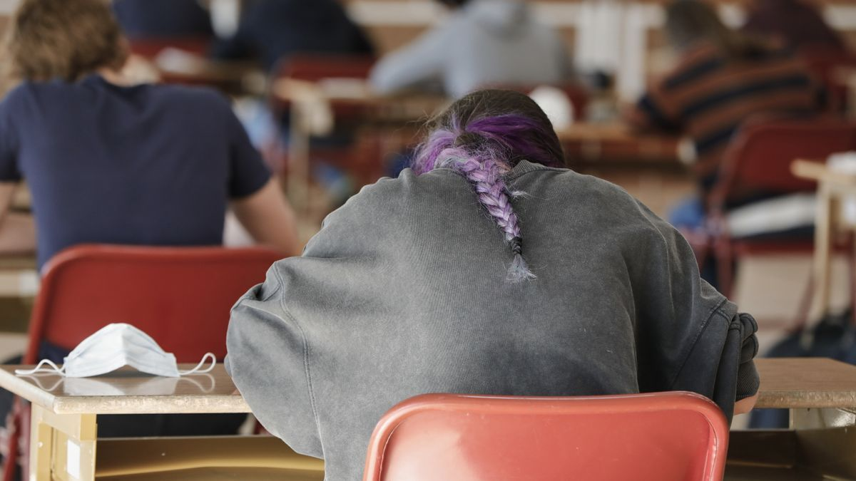 Alumnos de Bachillerato de un colegio de Boadilla del Monte , Madrid.