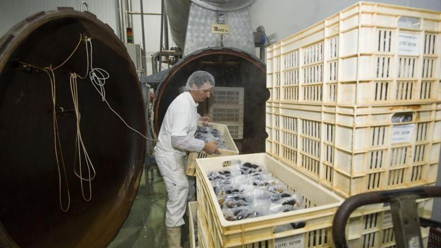 El músculo industrial permanece: así se reciclan pesqueras gallegas en quiebra