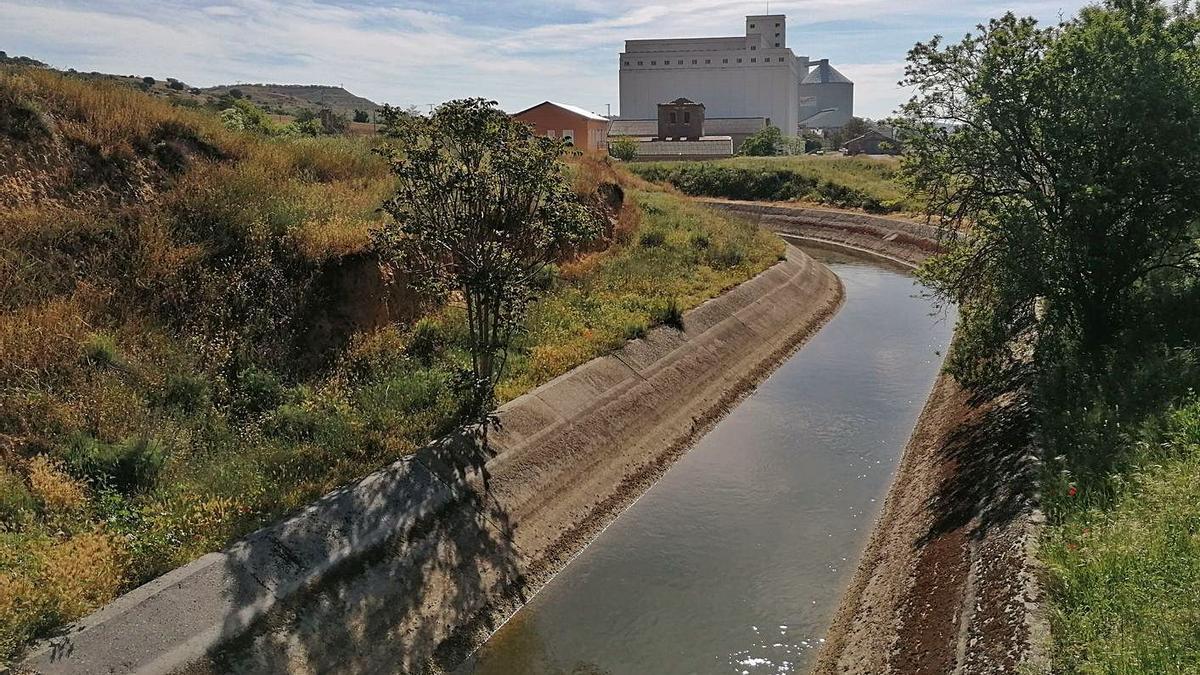 Canal Toro-Zamora en un tramo que discurre por el municipio, en las inmediaciones de la Azucarera. | M. J. C.