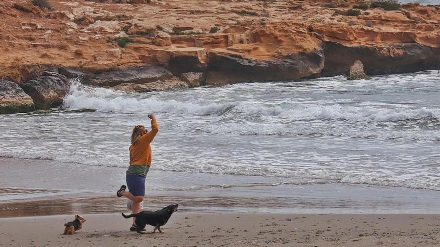 El Ayuntamiento de Orihuela habilita en Cala Mosca una playa canina accesible todo el año