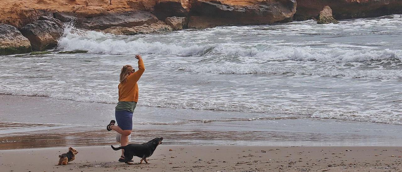 Una mujer juega con sus dos perros en la arena de la playa de Cala Mosca, en Orihuela Costa.    TONY SEVILLA