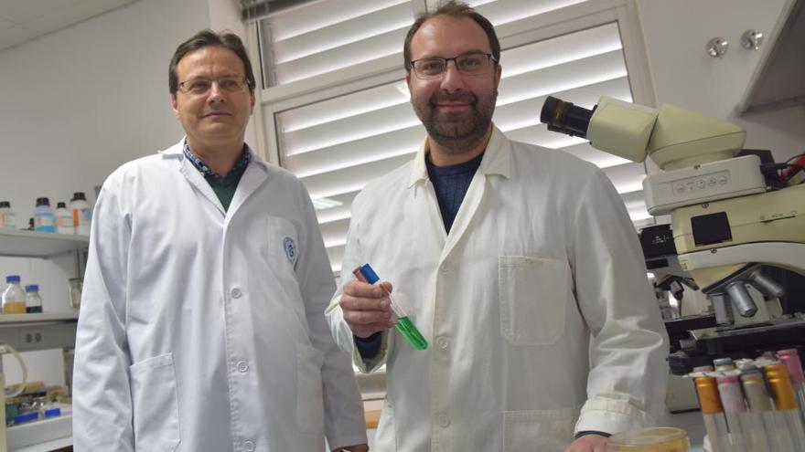 La AESA confía en la UPCT para la formación de investigadores al más alto nivel