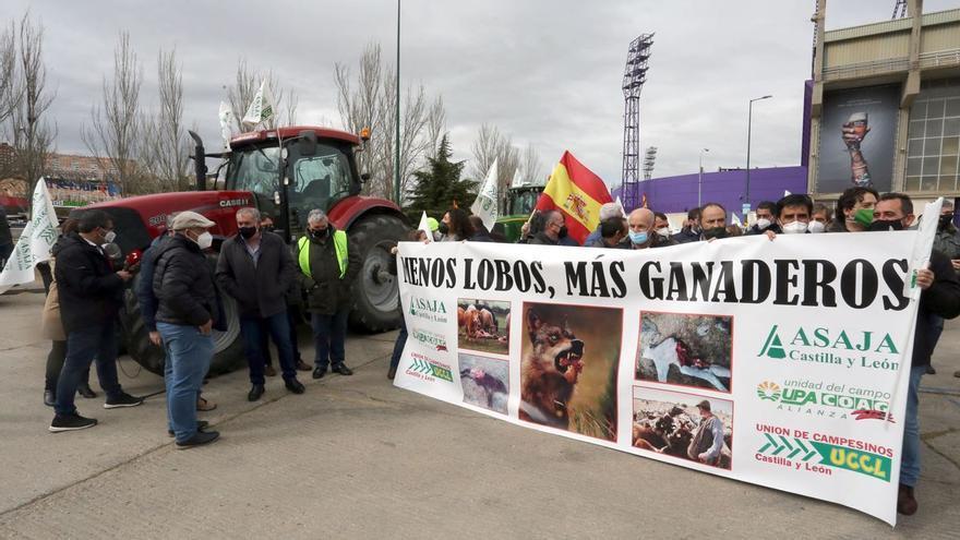 Las organizaciones agrarias animan a los zamoranos a manifestarse mañana con los ganaderos