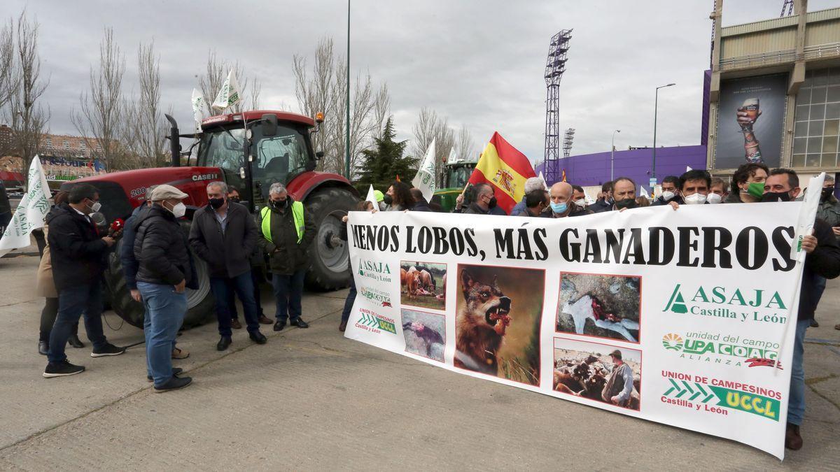 Última manifestación contra la protección del lobo celebrada en Valladolid.