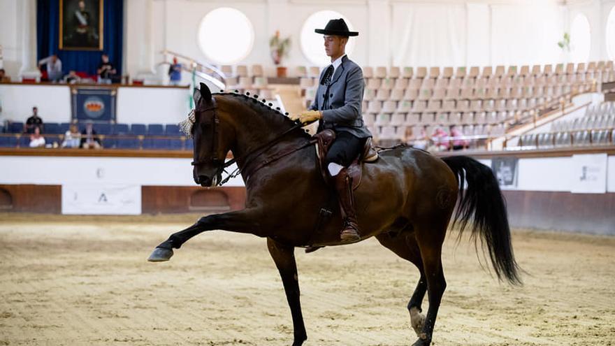 Sergio, el 'encantador' de caballos de Ribesalbes