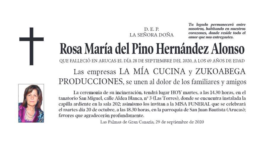 Rosa María del Pino Hernández Alonso