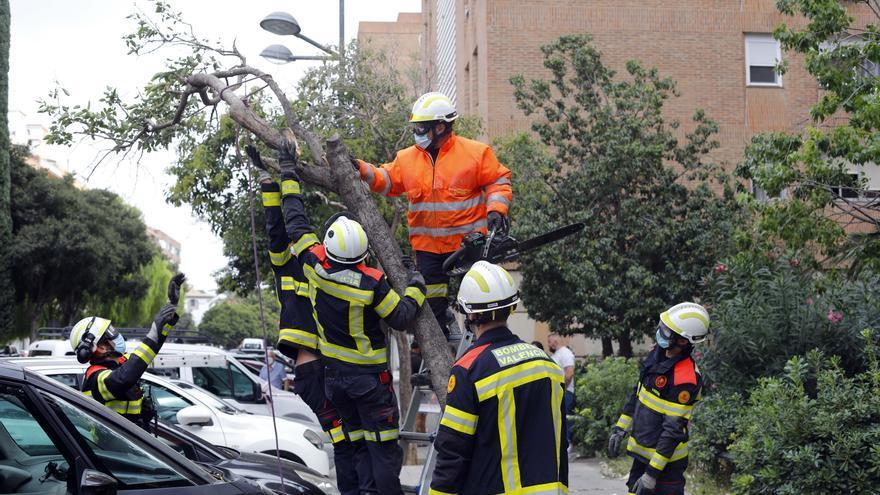 El tiempo en Valencia: La borrasca Álex desploma las temperaturas hasta 10 grados