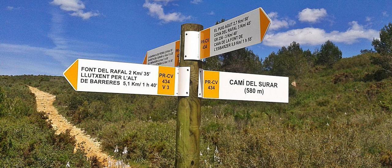 Una senda en suelo protegido de Barx, uno de los municipios que han cedido competencias. | LEVANTE-EMV